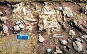 В Поднебесной найден самый древний в стране гоминид