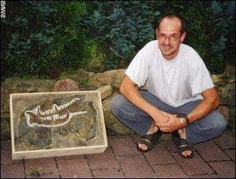 В Германии обнаружен гигантский 2,5-метровый скорпион