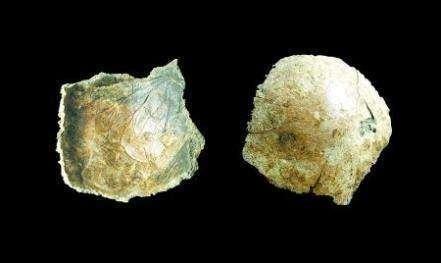 В Китае обнаружили человеческий череп возрастом 100 тыс. лет