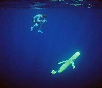 Разработан экологичный подводный глайдер