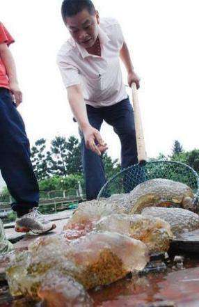 Китай наводнили странные существа